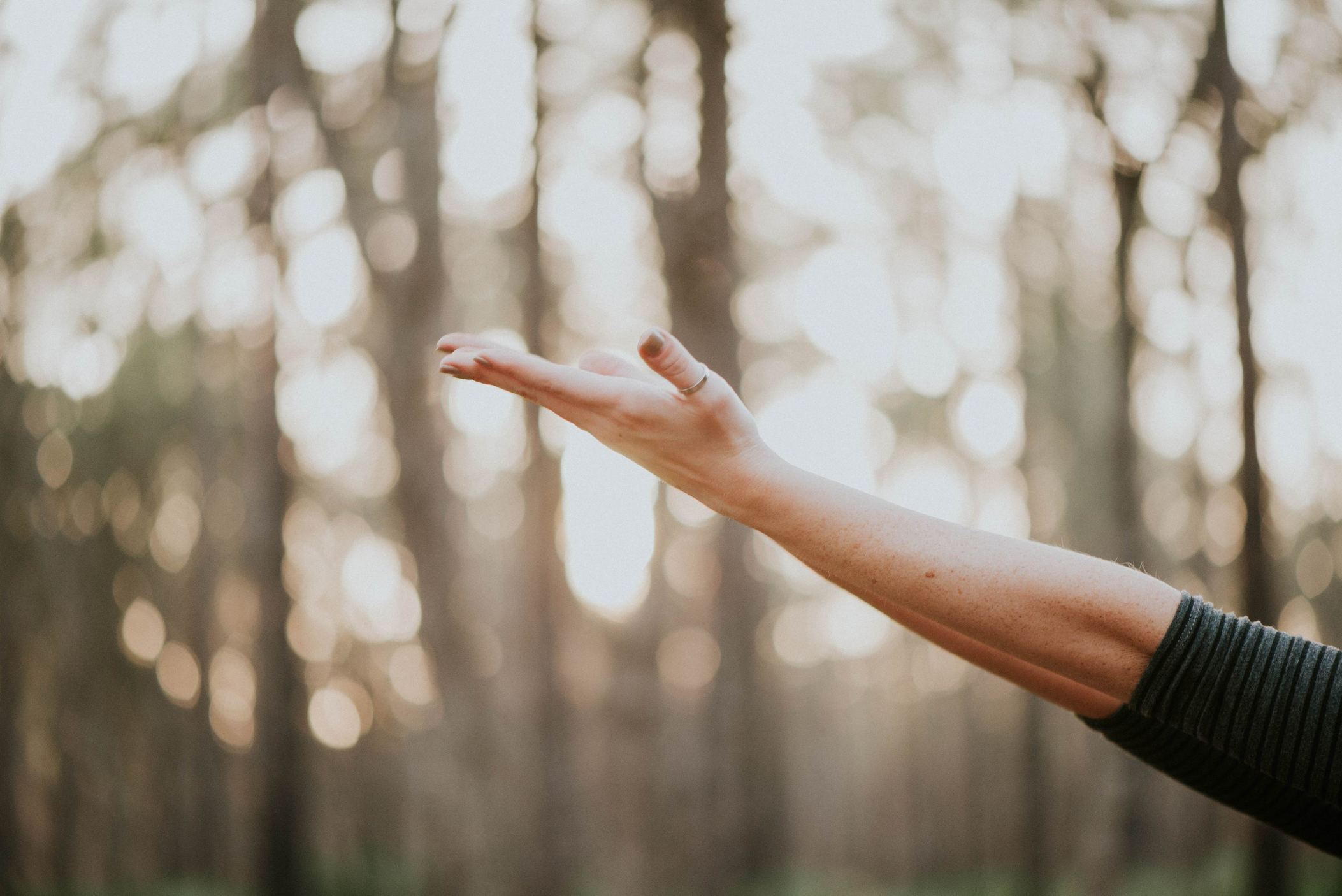 3 Reasons to Integrate Both Yoga & Ayurveda into Your Daily Life