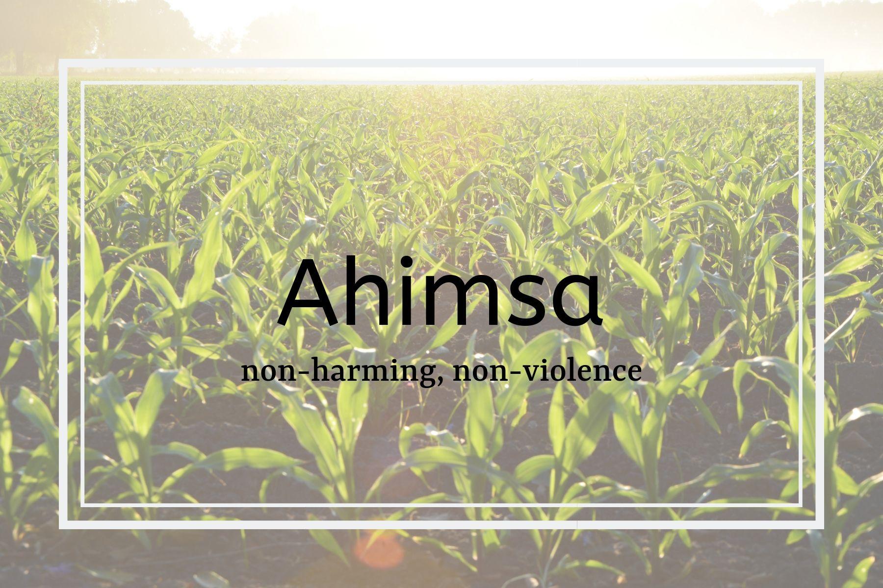 How Yoga & Ayurveda Can Help You Lead a More Sustainable Life - Ahimsa: Non Harming