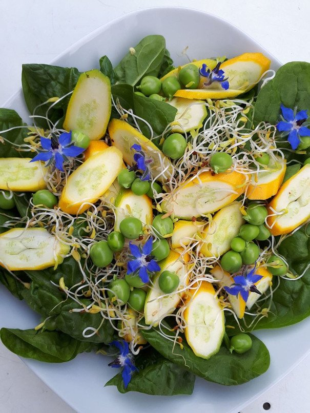 Summer Salad with Zingy Minty Dressing