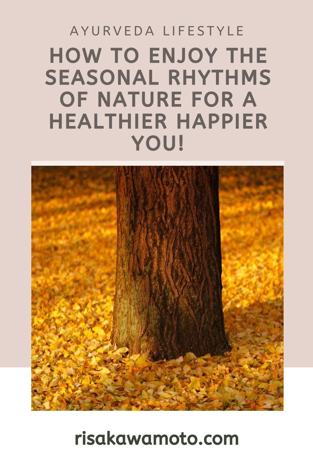 How to Enjoy the Seasonal Rhythms of Nature for a Healthier Happier You